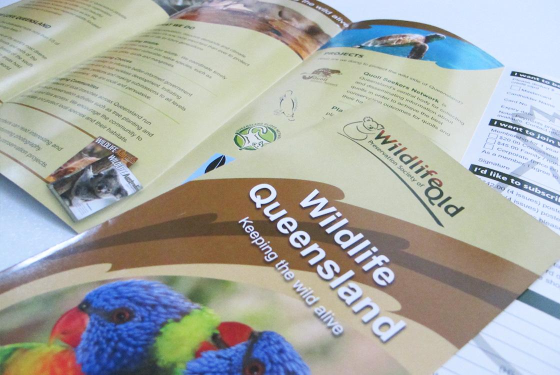 Wildlife QLD